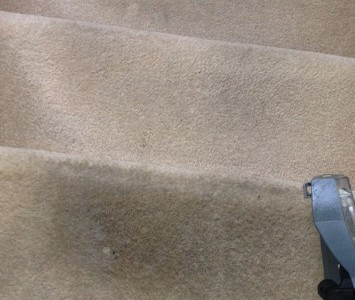 carpet cleaning, as cleaning, ipswich, suffolk, ipswich carpet cleaning